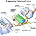 (EVAP) System